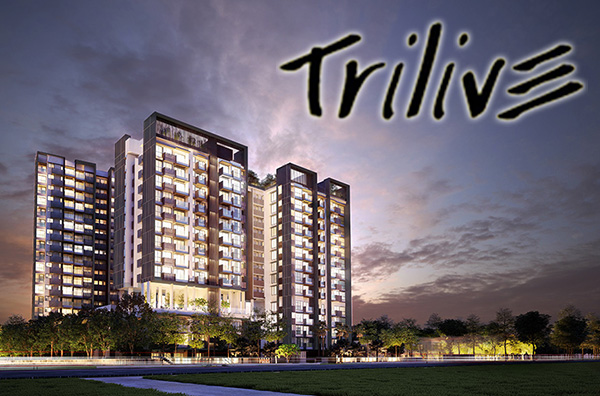 trilive-small